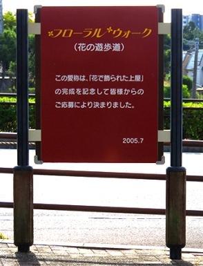 flw_04.jpg